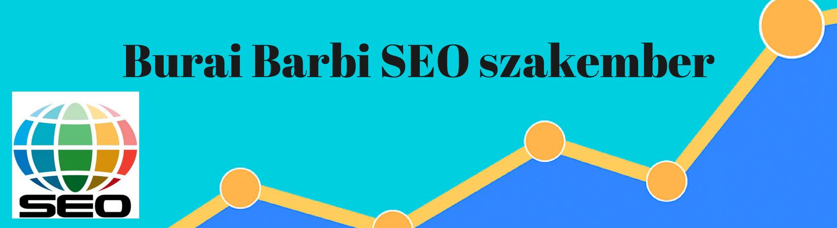 Burai Barbi logó - Burai Barbi SEO szakember, Keresőoptimalizálás, SEO, SEO szövegírás, SEO tanácsadás, Honlapkészítés, Honlapelemzés